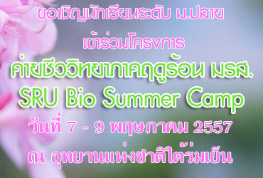 banner-web01